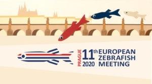 European Zebrafish Meeting 2020