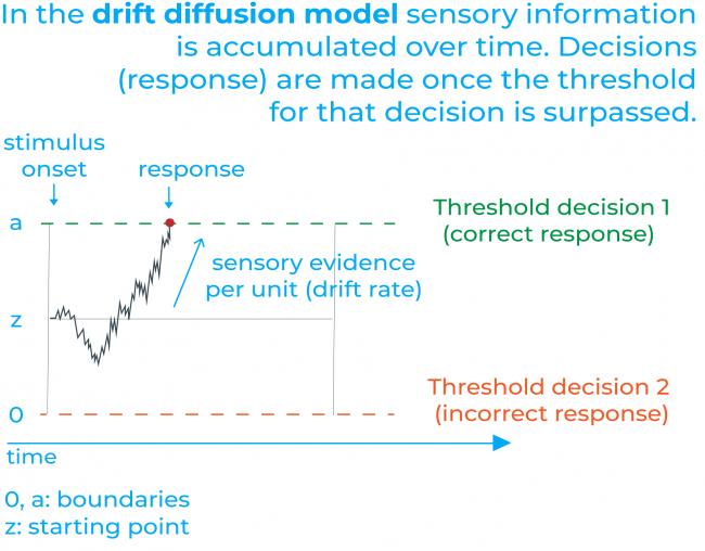 drift diffussion model