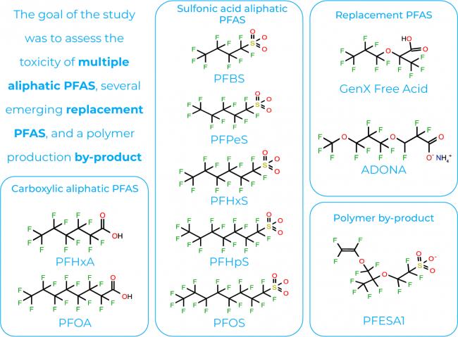 molecules PFAS