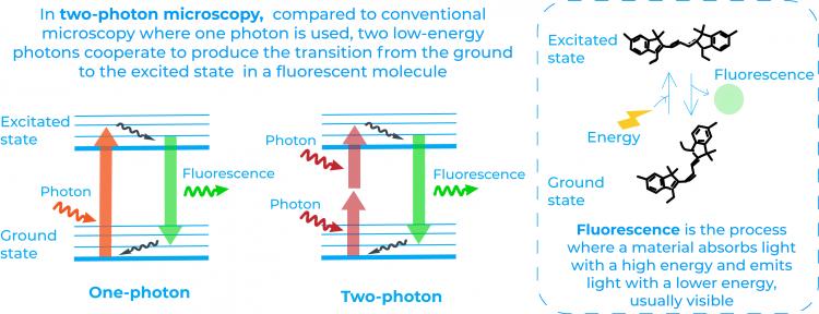 two photon
