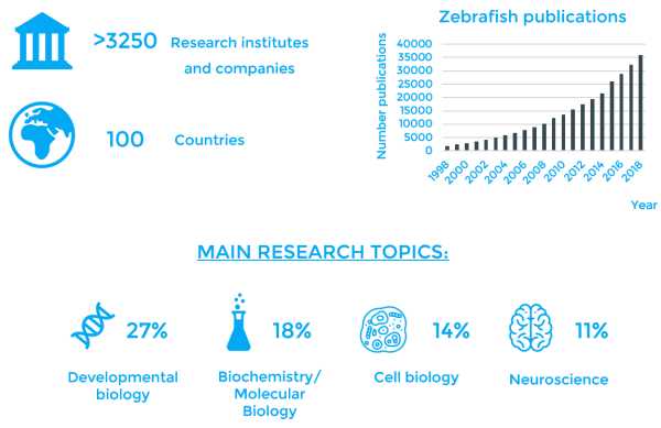 There are more than 3250 institutions working with zebrafish around the world (in more than 100 countires). The numer of publications using zebrafish has increased over the years being the main topics developmental biology (27%), biochemistry (18%), cell biology (14%) and neuroscience (11%)